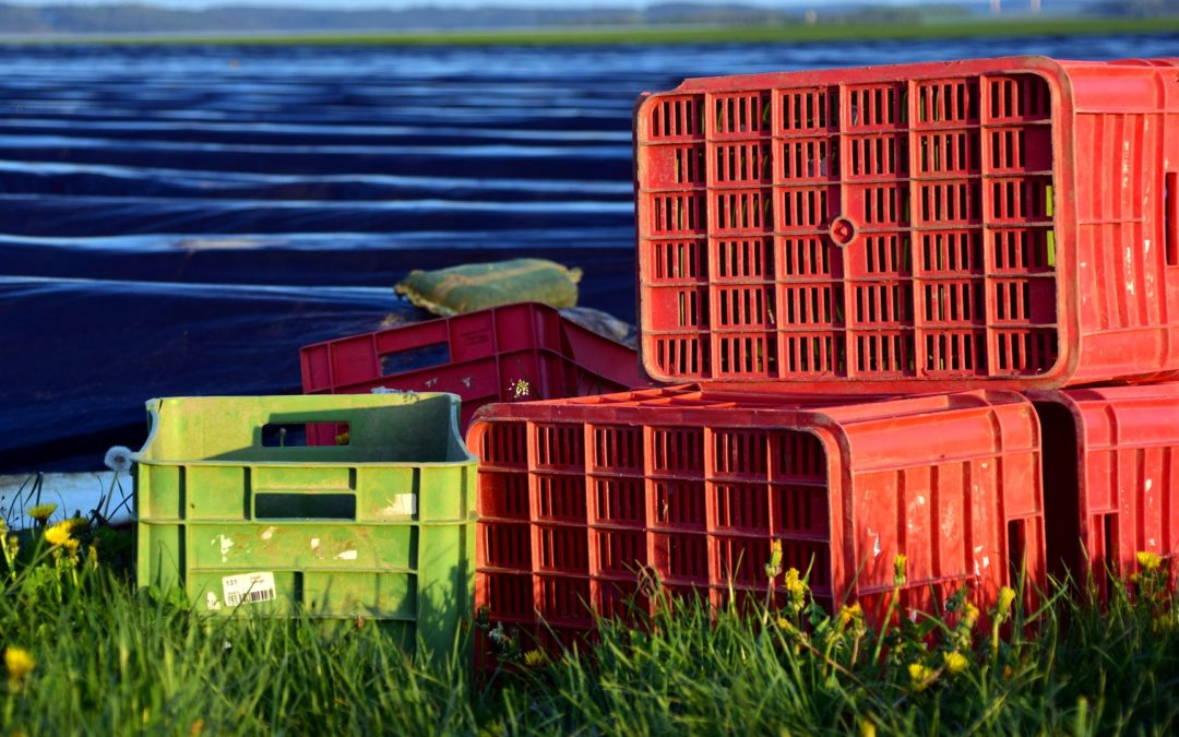 Crates, Boxes and Trays, Shawson Plastics Supplies a Wide Range !